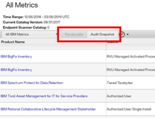 IBM Sub-capacity ILMT Audit Report